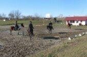 Konjički klub Bjelovar započeo godinu s polaganjem ispita za dozvole i licence