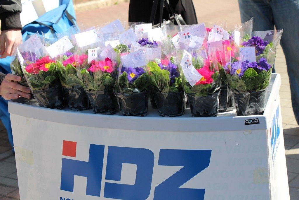 2015 HDZ dan zena 1