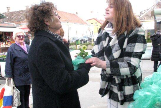 Bjelovarski HSS nastavio tradiciju darivanja lončanica za Međunarodni dan žena