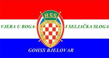 hss 2014 grb