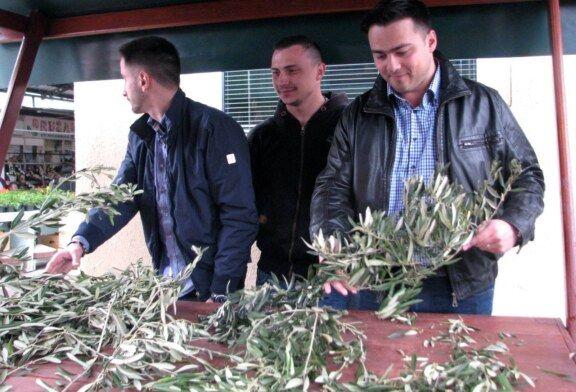 HDZ-ov kandidat za gradonačelnika Ante Topalović dijelio građanima maslinove grančice