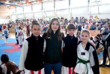 Bjelovarski foksići na kvalifikacijskom turniru