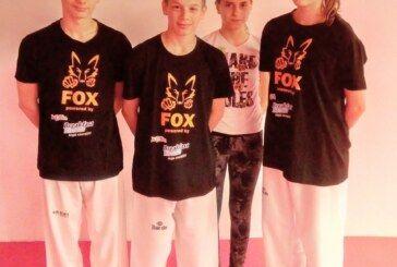 Bjelovarski taekwondo klub Fox nastupio na turniru Susedgrad Sokol Pokal 2017.