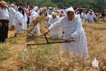 U Bjelovarsko-bilogorskoj županiji, u Zrinskom Topolovcu održan tradicionalni prikaz žetvenih svečanosti