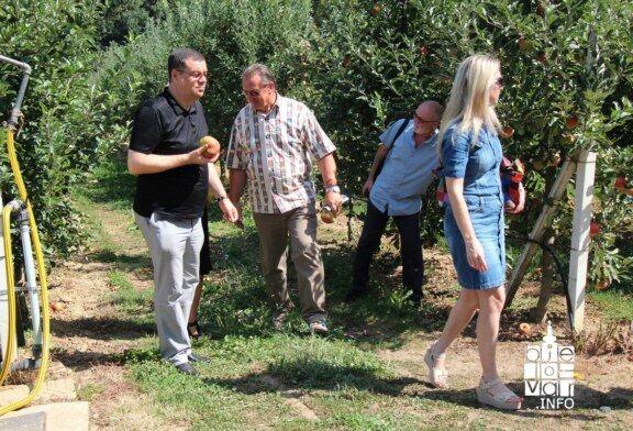 Svježe voće i povrće za učenike osnovnih i srednjih škola Bjelovarsko-bilogorske županije