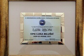 Luka Bilušić među najboljim mladim proizvođačima na Međunarodnoj izložbi rakije i pripravaka od rakije i octa