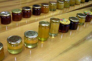 Održano osmo Županijsko ocjenjivanja meda, pristiglo 75 uzoraka od 44 pčelara s područja Bjelovarsko – bilogorske županije