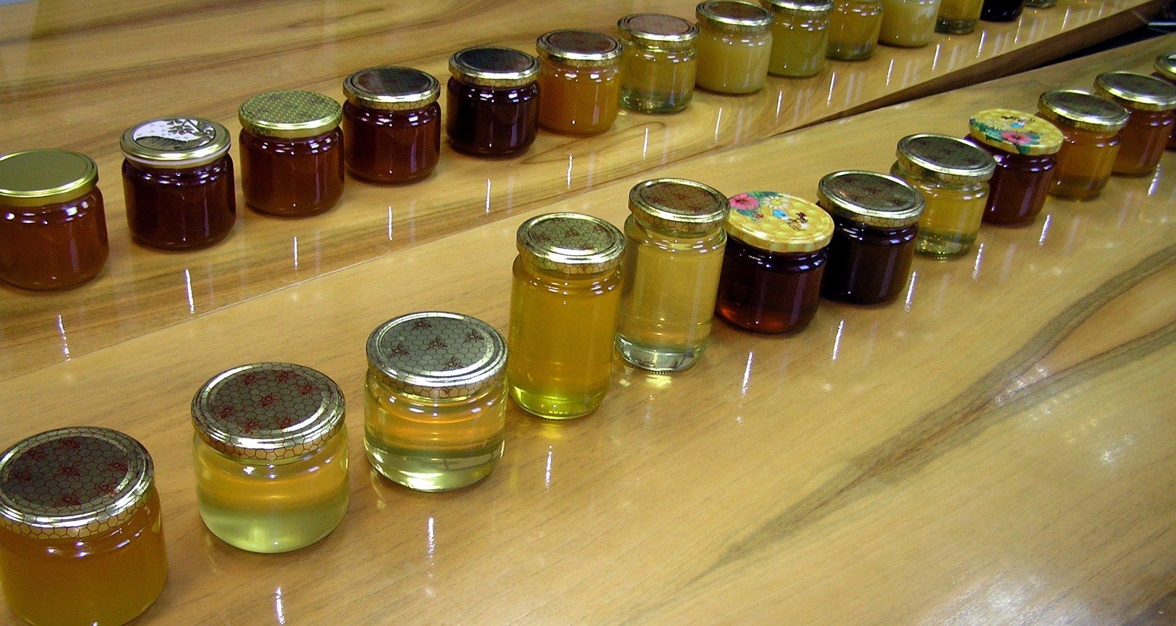 Održano osmo Županijsko ocjenjivanja meda, pristiglo 75 uzoraka od 44 pčelara s područja Bjelovarsko - bilogorske županije
