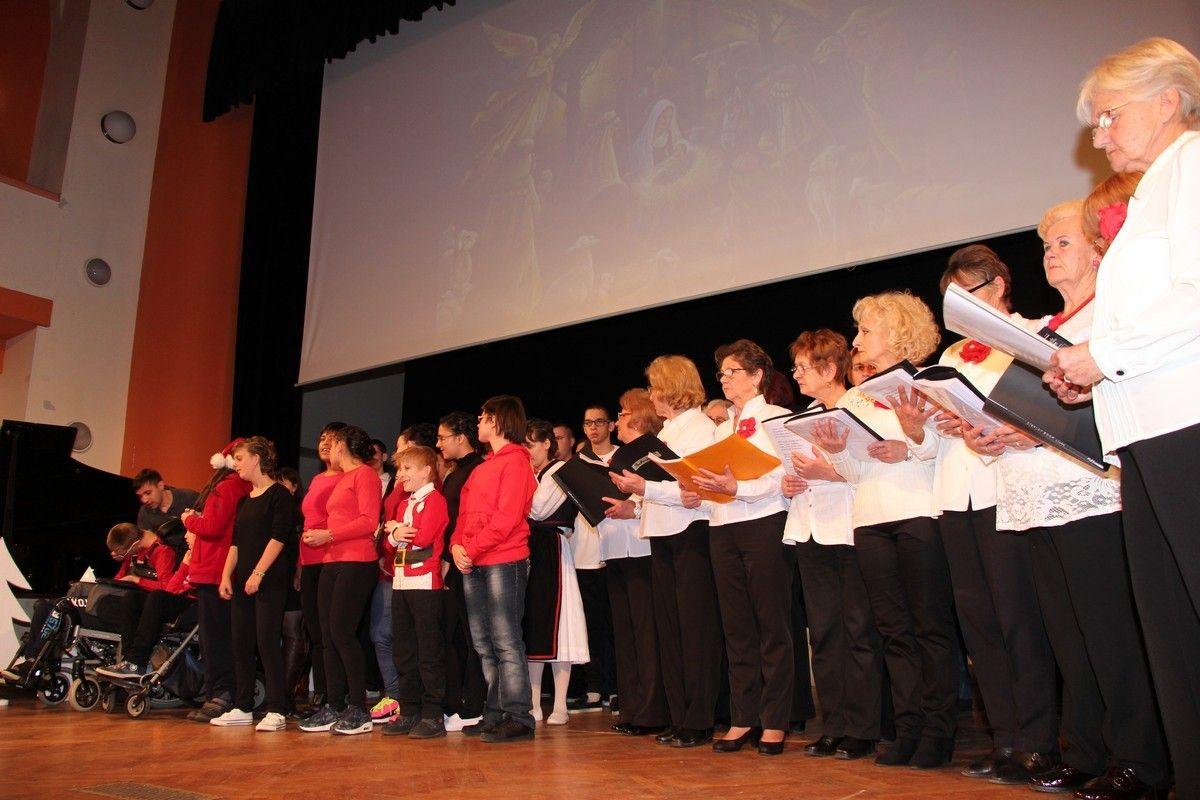 2017_petaosnovnaskola_74
