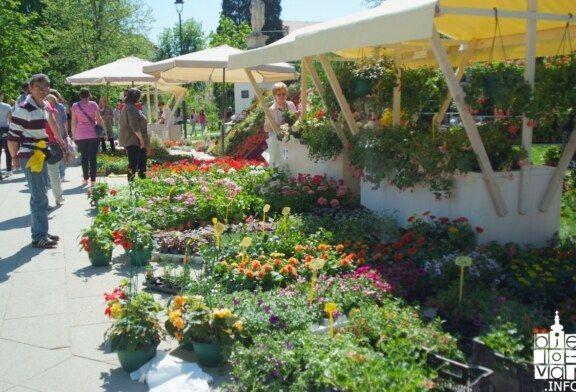 U Bjelovaru održan prvi dvodnevni Sajam cvijeća Flores