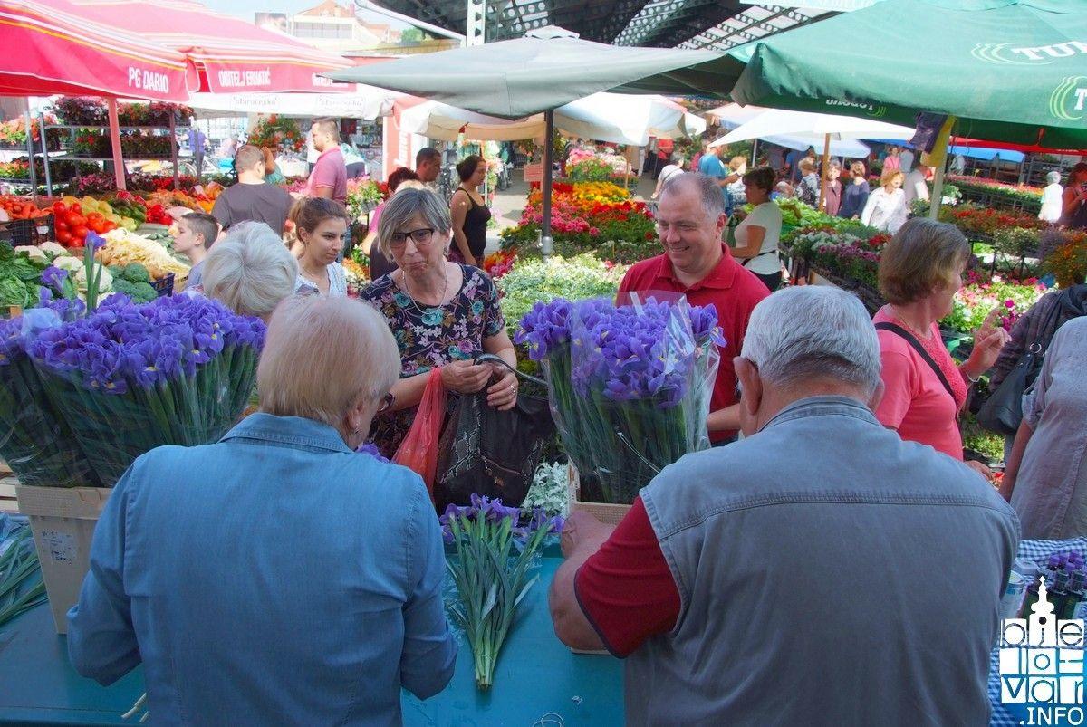 U Bjelovaru obilježen Svjetski dan bez duhana i Dan plavog irisa