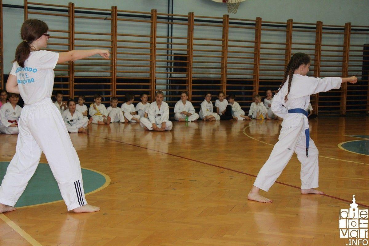 2018_taekwondobjelovar1_135