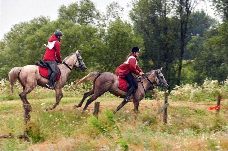 Zaljubljenici u lov na konje