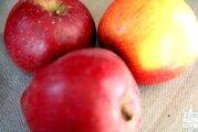 """Humanitarna akcija na bjelovarskoj tržnici """"Zdravom prehranom do zdravog života-jabukom do zdravlja"""""""