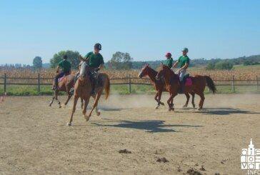 Konjički klubovi sve jača karika turizma Bjelovarsko-bilogorske županije