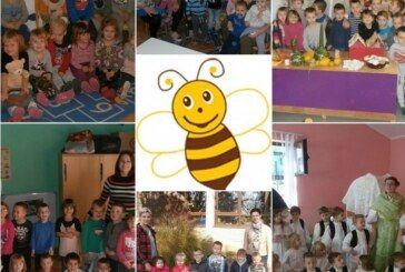 NATJEČAJ za prijem u radni odnos: DV Pčelica Čazma