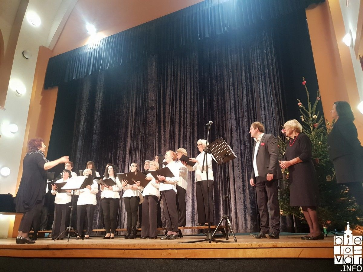 2018_vukovarske_koncert_16
