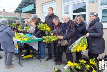 Bjelovar: obilježen 12. Dan mimoza i Nacionalni dan borbe protiv raka vrata maternice