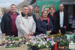 Bjelovarski HSS svojim sugrađankama čestitao Dan žena lijepim maćuhicama