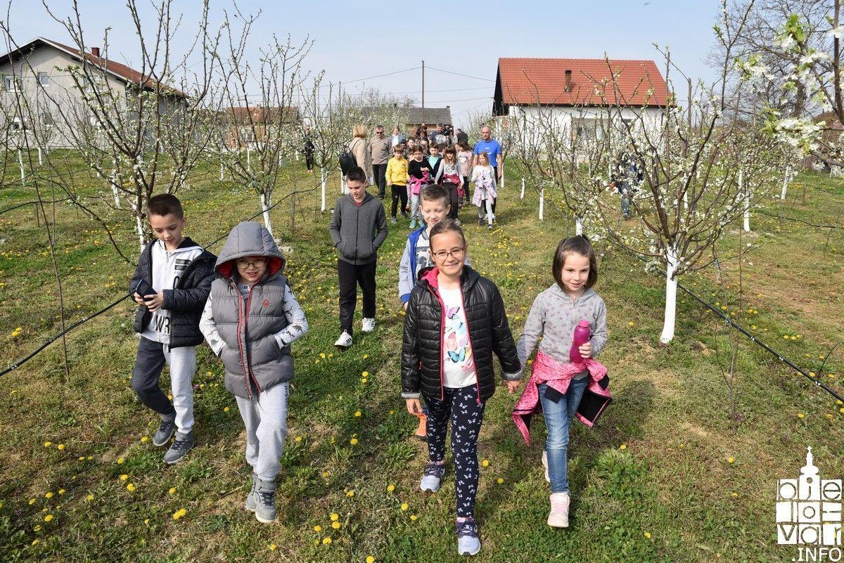 RAJ U PRIRODI: Prva manifestacija za djecu Dani cvatnje šljive i aronije