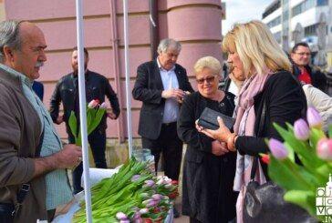 Omiljeni cvijet Ane Rukavine u Bjelovaru