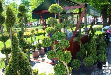Spoj Izložbe glumaca i Sajma cvijeća razveselio Bjelovarčane