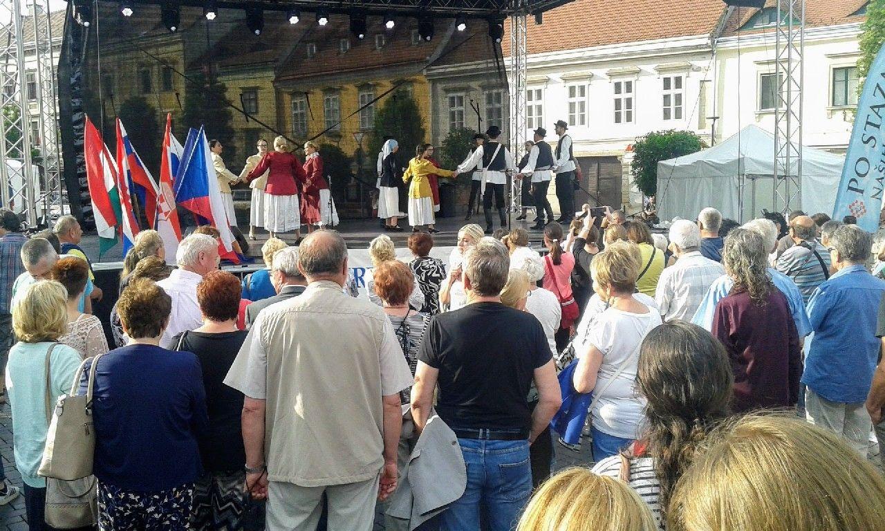 2019_bjelovar_info_golub_4