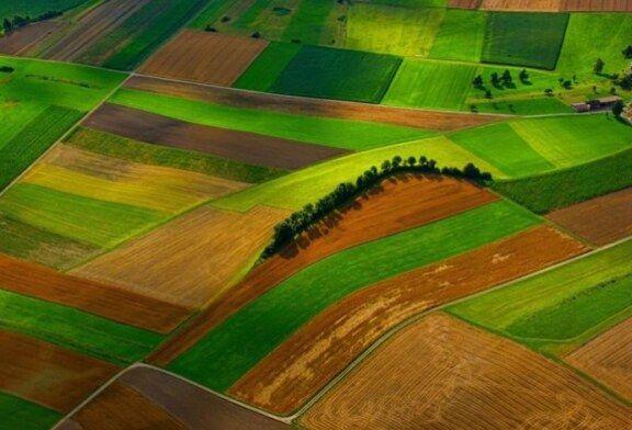 Izjednačene cijene zakupa za državno poljoprivredno zemljište – Pravilnik sutra stupa na snagu