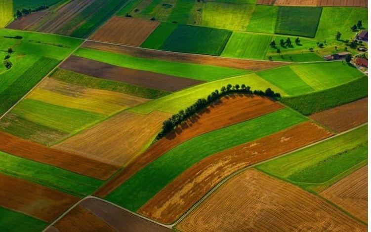 Izjednačene cijene zakupa za državno poljoprivredno zemljište - Pravilnik sutra stupa na snagu