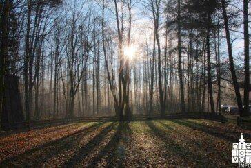 Županija: Zabranjen lov srne obične u zajedničkom otvorenom lovištu Ivanovo Selo- Ilova