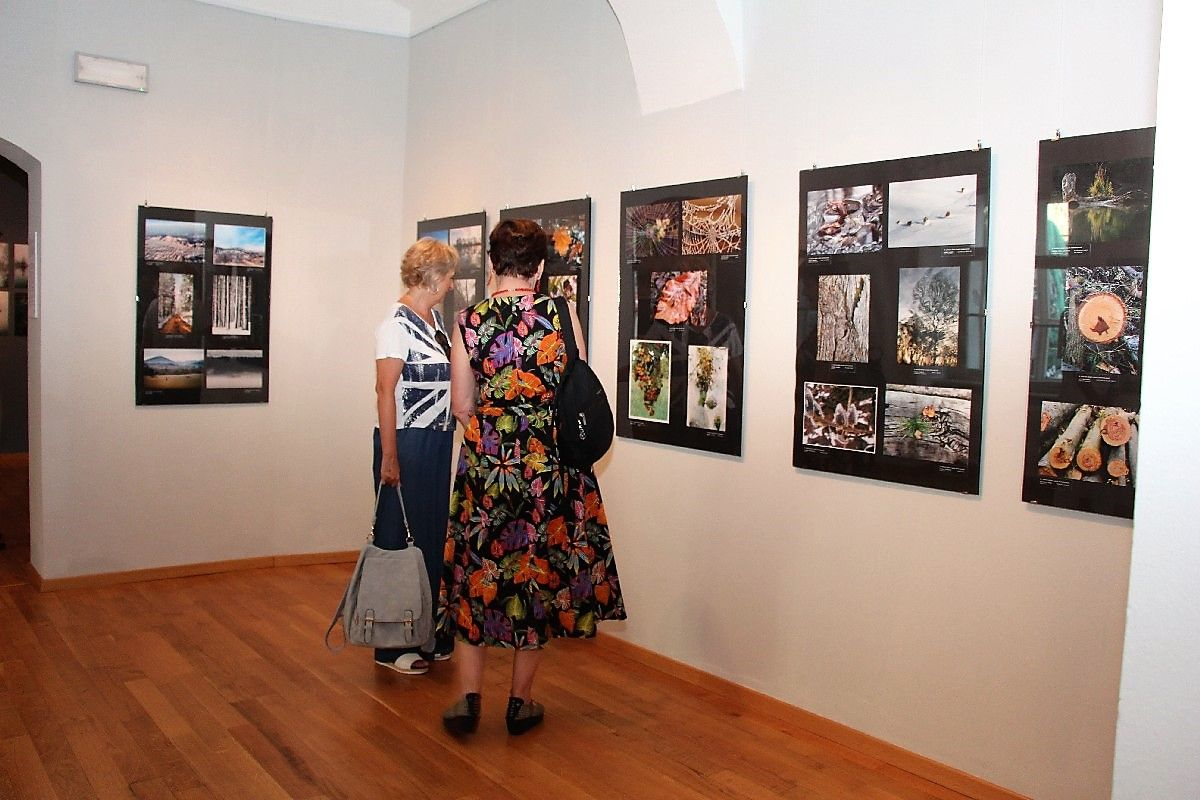 Otvoren 15. bjelovarski salon fotografije