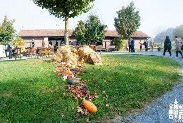 JESEN NA BILOGORI: Posjetitelji uživali u domaćim proizvodima i jesenskoj idili bilogorskog kraja