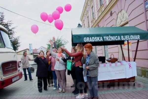 2019 bjelovar info bjelovar it radionice 64
