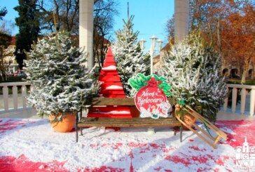 Četvrti Adventski vikend u Bjelovaru: Druženje s hokejašima, koncerti, domaći specijaliteti i puno toga…