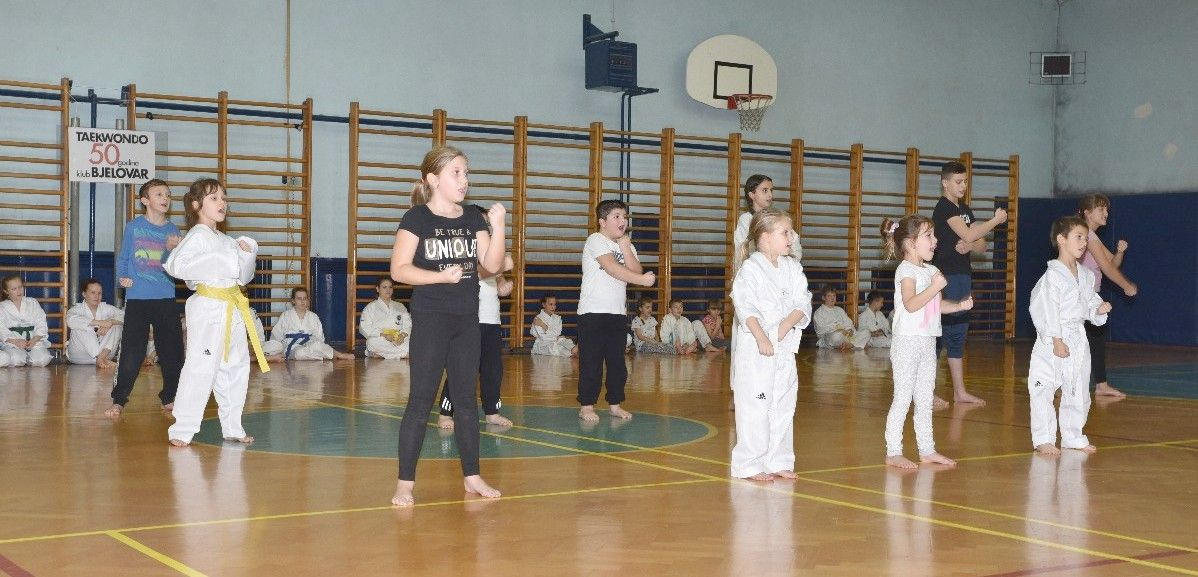 2019_bjelovarinfo_taekwondo_20_12_2019_13