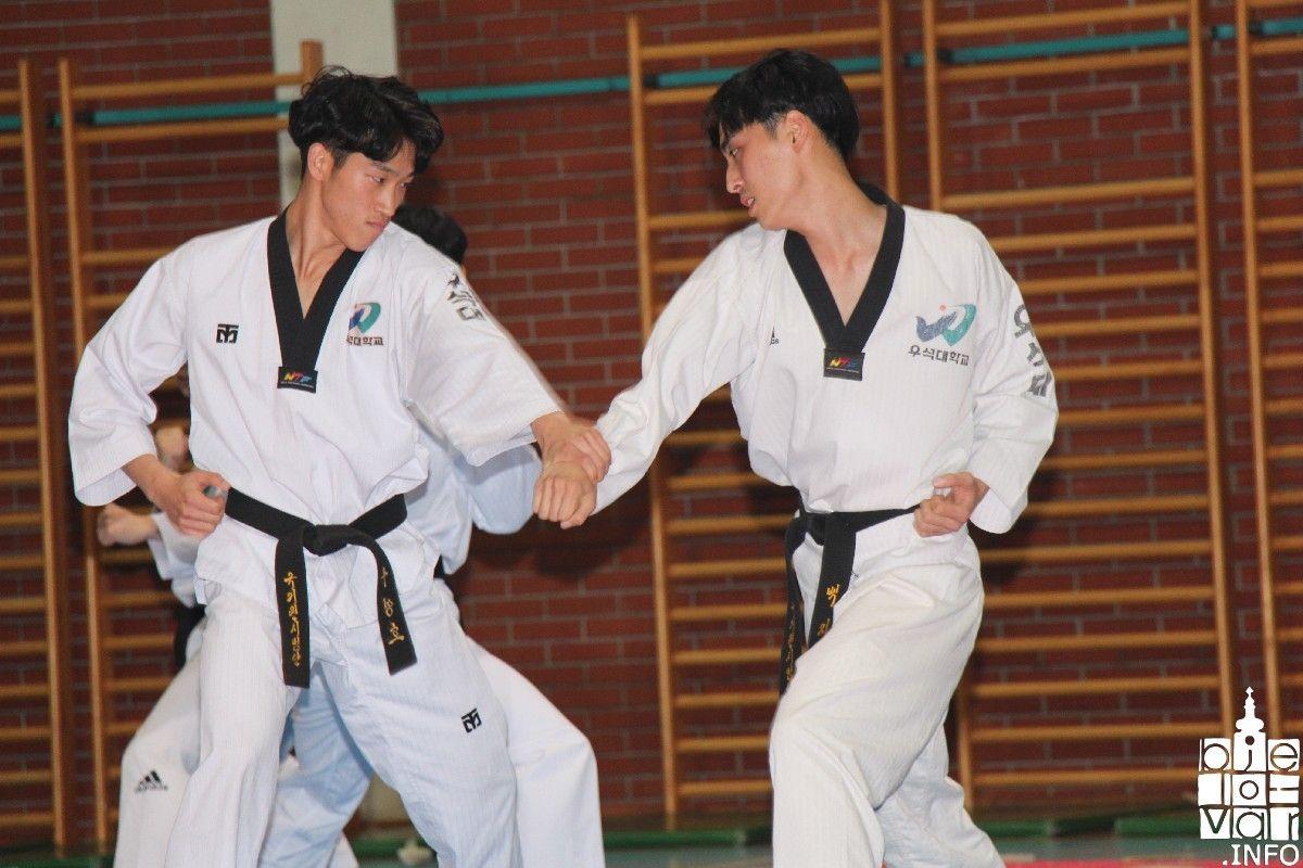2019_bjelovarinfo_taekwondo_klub_101