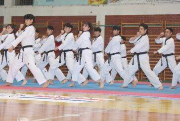 """(FOTO) Bjelovar: Korejski taekwondo tim pokazao vrhunske vještine u egzibicijskom nastupu """"Korea demo show"""""""