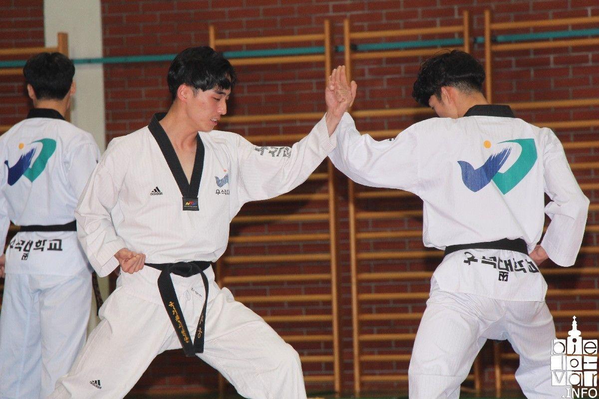 2019_bjelovarinfo_taekwondo_klub_98