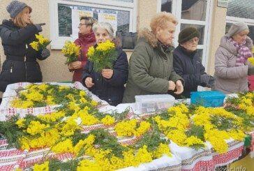 Hrvatski dan mimoza: Bjelovarčani podržali humanitarnu akciju u borbi protiv raka vrata maternice – Godišnje oboli oko 300 žena