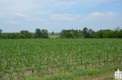 Županija: Veliki interes poljoprivrednika za kreditiranje proljetnje sjetve
