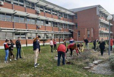 Učenici Medicinske škole Bjelovar uzgojili vrt s aromatičnim biljem – bjelovar.info