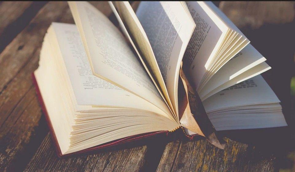Završit ćemo dan s knjigom - MISLI UZ SVJETSKI DAN KNJIGE