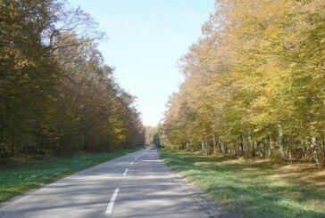 Osamnaesti dan bez novozaraženih u Bjelovarsko-bilogorsko županiji