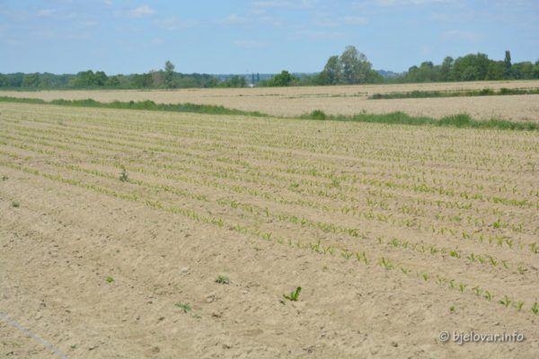 2020 5 06 županija poljoprivreda 7
