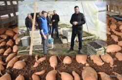 (FOTO) Grad Bjelovar nastavlja s potporama za poljoprivrednike – Predstavnici Grada posjetili OPG Bobinac