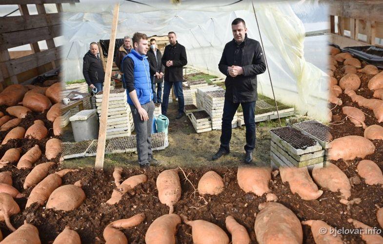 (FOTO) Grad Bjelovar nastavlja s potporama za poljoprivrednike - Predstavnici Grada posjetili OPG Bobinac