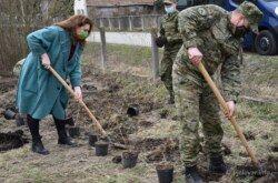 (FOTO) Grad Bjelovar se priključio akciji 'Zasadi stablo, ne budi panj'