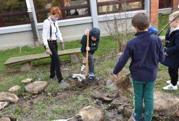 (FOTO) I mali i veliki uključili se u kampanju sadnje drveća na području naše županije – Nedovoljno razvijena ekološka osviještenost vodećih ljudi