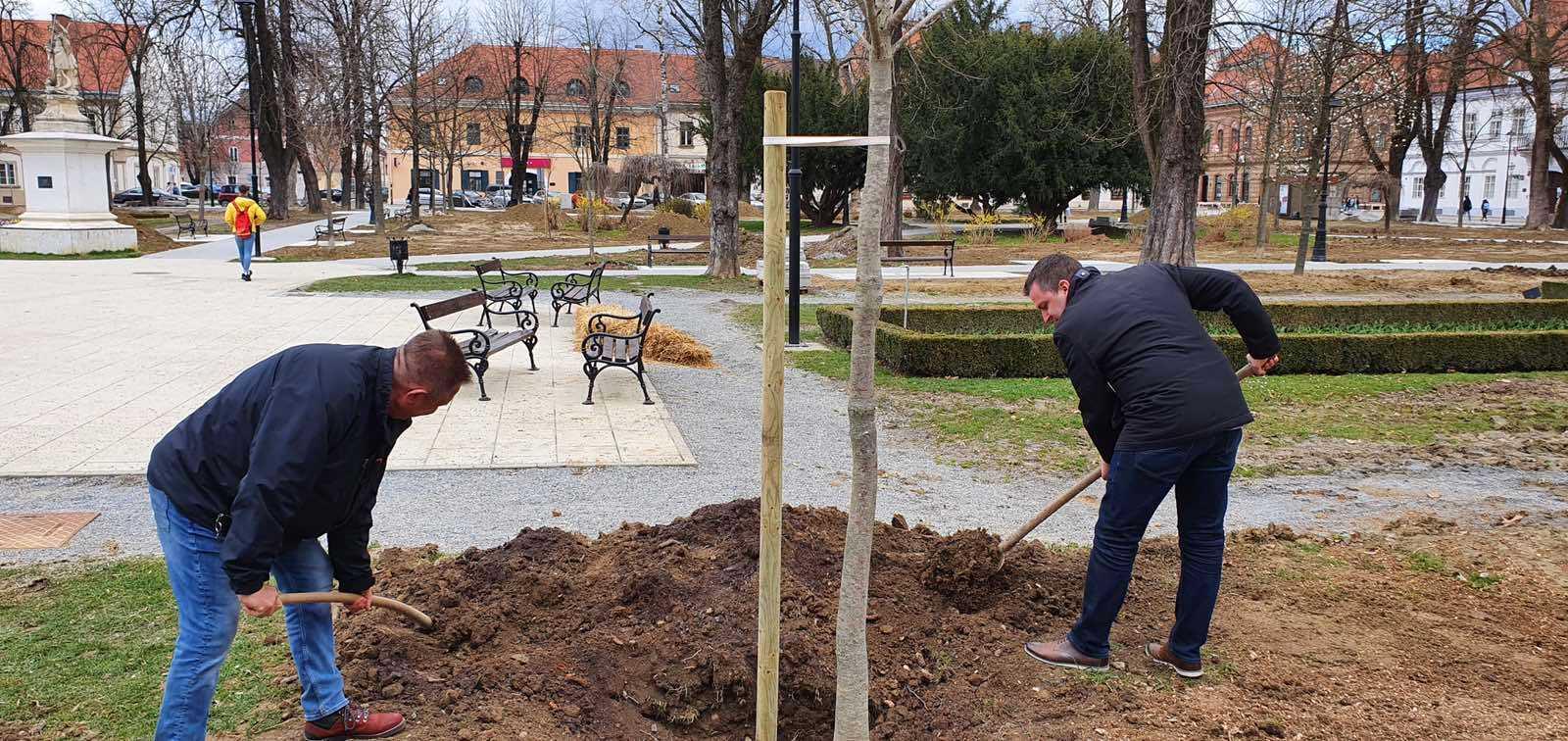 Bjelovarski park će uskoro zaživjeti u novom ruhu proljetnog cvijeća i zasađenih stabala