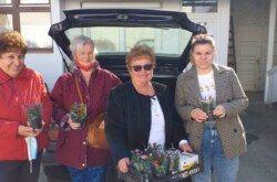 Dan žena obilježila i Udruga Srce Bilogore: Uručile cvijeće ženama Pučke kuhinje, Udruge Osit i Sigurne kuće
